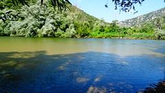 Ποταμος Νεστος DSC04721 (omirou56) Tags: 169ratio sonydschx60v ποταμι ποταμοσνεστοσ ελλαδα νερο δεντρα φυση ουρανοσ σκιεσ