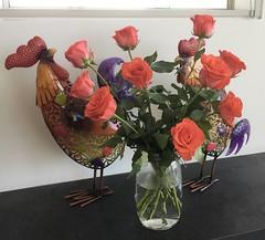 20190214 Valentine's Day (rona.h) Tags: ronah 2019 february valeninesday john