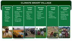 Climate Smart Village Component (Borlaug Institute for South Asia) Tags: csv climate smart interventions components research aspects cimmyt agriculture farming india asia south pusa farm field plot site farmer producer person man indian asian collaboration partnership maize corn crop plant borlaug institute for bisa