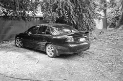 2005 Holden Commodore rear (Matthew Paul Argall) Tags: canonsnappy20 fixedfocus 35mmfilm kentmere100 100isofilm blackandwhite blackandwhitefilm car vehicle automobile transportation holden holdencommodore generalmotors carspotting