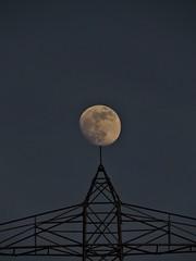 """Moon exhibition"" (norbertherrmann) Tags: moon mond night stars astronomie luna sky p600 coolpix nikon"