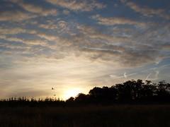 Ein neuer Tag (photohml) Tags: photograf nrw nordrheinwestfalen rheinland linnich tetz wolken clouds olympus zuiko 18180 e520 mzuiko oly dslr spiegelreflex esystem olympuse fourthirds ft 43
