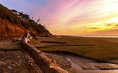 Sunset at Kalaloch beach (G.E.Condit) Tags: sunset beach washington driftwood water sky 6d landscape gecondit grantcondit kalaloch kalalochbeach