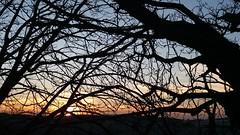 Greenford sunset (John Steedman) Tags: greenford sunset london uk unitedkingdom england イングランド 英格兰 greatbritain grandebretagne grossbritannien 大不列顛島 グレートブリテン島 英國 イギリス ロンドン 伦敦