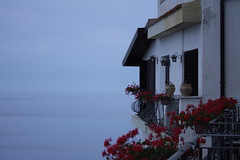 Taormina - Catania (carmeloserrano#1) Tags: italia italy sicilia sicily catania taormina mare sea cielo sky fiori flowers blu blue canon eos stm dpp carmelo serrano carmeloserrano