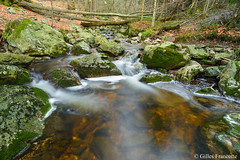 Waterfall (gillesfrancotte) Tags: 2019 ardennes cantonsdelest d800 eastbelgium fagnes jalhay nikon outdoor statte cascade creek eau fall fens hiver landscape longexposure nature river stream torrent water waterfall waterscape winter hoëgne