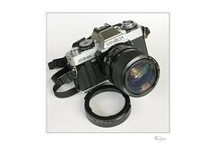 Minolta XG-M (radspix) Tags: minolta xgm sony ilce a7r fe 2870mm f3556 oss