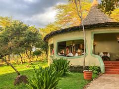 Breakfast on The Veranda (Jill Clardy) Tags: africa tanzania vantagetravel safari travel trip 20190221img3223 lake manyara serena lodge verandah breakfast dining early morning acacia tree explore explored