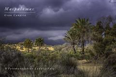 Maspalomas (Fotomanufaktur.lb) Tags: grancanaria canaries canary clouds sky schölkopf schoelkopf canon dramatik dramatisch