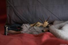 Tendresse (BenoitGEETS-Photography) Tags: jeaneude midori figurine toys jouet punk sylve a6000 sony sylphe tender tendresse 112 tenderness