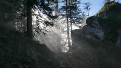 Luchsfallwand Nebel Sonne (Aah-Yeah) Tags: luchsfallwand nebel fog mist sonne sunrays sonnenstrahlen achental chiemgau bayern