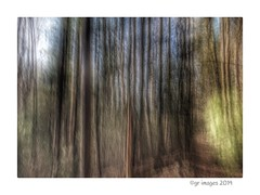 Iphoneography (GR167) Tags: impressionism slowshutter iphoneart iphoneography icm