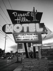 Desert Hills (Thomas Hawk) Tags: america deserthillsmotel oklahoma route66 tulsa usa unitedstates unitedstatesofamerica bw cactus motel neon us fav10 fav25 fav50 fav100