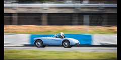 Austin Healey 100 (Laurent DUCHENE) Tags: godsavethecars auto automobile automobiles classiccar car motorsport youngtimer autodrome linasmontlhéry 2018 austin healey 100 roadster