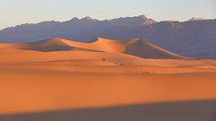 5D4_0326_DPP_Comp2048 (SF_HDV) Tags: canon5dmarkiv canon5dmark4 5dmarkiv 5dmark4 5dm4 california inyocounty desert sand sanddune park nationalpark deathvalley deathvalleynationalpark deathvalleynp mesquitedunes sunrise mountain