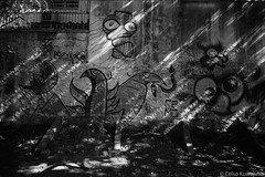 Vila Madalena, São Paulo (Celso Kuwajima) Tags: analogphotography shadows leicam4 leicasuperangulon13421mm kodaktmax100 wallpainting graffiti lightpatches sãopaulo brazil br 20190243
