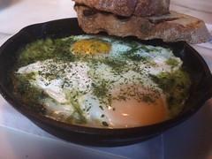Green eggs at Rex 1516 (htomren) Tags: phonepics rex1516 food eggs brunch