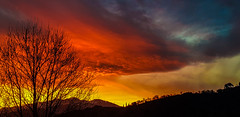 Coucher de soleil... (Isabelle****) Tags: coucherdesoleil sunset couleurs colors céret pyrénéesorientales france canigou arbres trees