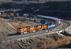 Pumpkins in the Canyon (jamesbelmont) Tags: bnsf bnsfrailway hpvosto jordannarrows bluffdale lehi utah manifest trackagerights unionpacific ge c449w es44dc es44ac gp60m3 railroad railway train locomotive