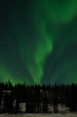 March Madness-195 (juan_guthrie) Tags: yellowknife nwt northernlights