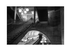 *** (Gediminas Bernotas) Tags: ilfordhp5plus olympusxa4 kodakhc110 hdilution push iso800 paris metro citestation subwaystation subway blackwhite filmphotography