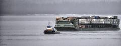 AML Tug Barge 325 (Gillfoto) Tags: aml tug barge southeastalaska insidepassage alaskanpanhandle alaskapanhandle alaskamarinelines
