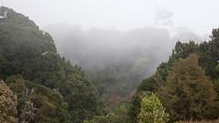 Costa Rica - Savegra Valley (Rez Mole) Tags: costa rica savegra valley