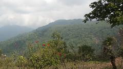 Costa Rica - La Georginia area (Rez Mole) Tags: costa rica la georginia
