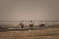 Fishing Boats (iamfisheye) Tags: 300mm vr february nikon f4 modhvabeach india d500 naturetrek xqd afs tc14iii pf 2019 gujarat raremammalsandbirdsofgujarat