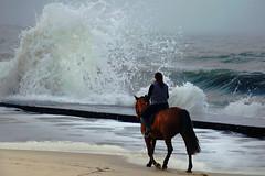 Riding against the wave (Le.Patou) Tags: france aquitaine medoc soulac plage océan cheval chevauchée eau sable bleu reflet fz1000 beach ocean horse ride water sand blue wave foam vague jetée pier