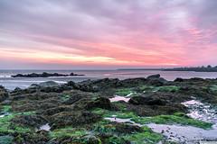 Seapoint at dawn. (PeterJJC-Ireland) Tags: dawn dublin spring seapoint sonyilce7rm3 ireland april dúnlaoghairerathdown ie