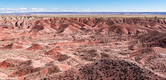 Colors of the Desert - Explore (Ron Drew) Tags: nikon d850 arizona az nationalpark painteddesertpetrifiedforestnationalpark autumn desert dunes clouds park vista landscape usa southwest outdoor