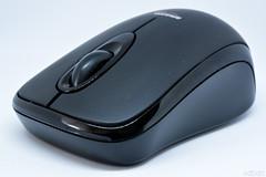 Ratolí (vdbdc) Tags: closeup close mousse ratoli raton black negro negre