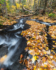 Autumn Stream 1 (burntpixel.ca) Tags: canada ontario ottawa photo photograph rural fine art patrick mcneill burntpixel beautiful amazing landscape sony a7r2 a7rii sonya7r2 wander orange autumn leaves fall waterfall rapids forest peaceful silent silentlake provincial park