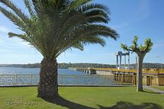 Orellana, barrage   dam   presa ([ ͆ ◎] Bernard LIÉGEOIS) Tags: espagne españa spain estrémadure extremadura laserena orellana paysage landscape