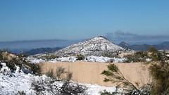 north-scottsdale-1902230133 (nagerfran) Tags: cactus winter desert storm snow cold freeze arizona scottsdale tontonationalforest