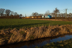 Wrist (Nils Wieske) Tags: schleswigholstein mittelholstein baureihe 185 cfl cargo güterzug bahn eisenbahn train railway railroad