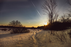 The greenbelt - Ottawa (Steph. G) Tags: copyright hiver ottawa greenbelt ceinturedeverdure ontario canada winter soleil sunset coucherdesoleil lumiere light sunlight paysage landscape canadianwinter neige snow