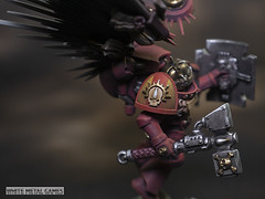 Blood Angels Captains (whitemetalgames.com) Tags: warhammer40k warhammer 40k warhammer40000 wh40k paintingwarhammer gamesworkshop games workshop citadel whitemetalgames wmg white metal painting painted paint commission commissions service services svc raleigh knightdale northcarolina north carolina nc hobby hobbyist hobbies mini miniature minis miniatures tabletop rpg roleplayinggame rng warmongers wargamer warmonger wargamers tabletopwargaming tabletoprpg blood angels death company captain smash librarian