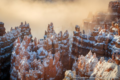 The Magic of Winter (David Swindler (ActionPhotoTours.com)) Tags: bryce brycecanyon fog snow southwest utah winter desert sandstone