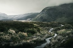 The Foothills of Tongariro National Park (Oli.Anderson) Tags: new zealand hills mountains volcano national park path fog misty gloomy adventure trails