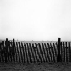16-02-2019-003 (leofg37) Tags: rolleiflex ilford delta 400 noir et blanc black white argentique photographie la rochelle