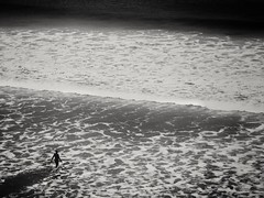 Surfer (oldgreenbridge) Tags: surfer sea waves blackandwhite whiterocksbeach beach