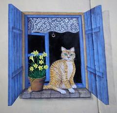 Le finestre dipinte di Pigra (Valle Intelvi) (ornella sartore) Tags: murale finestra gatto fiori colori allaperto particolari
