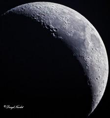 311 (dnicpix) Tags: celestronuniverse nightsky nightscene night dnicpix darylnicolet moon stars universe celestron astrophotography 5dm3 canon canon5dm3 crater grey dark