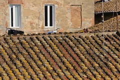 One wall, three roofs - residential district, Siena, Italy. (edk7) Tags: nikond300 nikonnikkor18200mm13556gedifafsvrdx edk7 2008 italy italia tuscany toscana siena contradadellondadistrict contradadellonda architecture building oldstructure old city cityscape urban centre rooftile ceramic wall shadow window stonework brick crusty texture pattern lichen