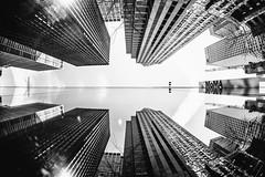 If Things Should Ever Turn Out Wrong (Thomas Hawk) Tags: america manhattan moma museum museumofmodernart nyc newyork newyorkcity usa unitedstates unitedstatesofamerica architecture bw reflection us fav10 fav25 fav50 fav100