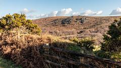 Smallcombe Rocks (Keith in Exeter) Tags: dartmoor landscape smallcombe rocks hill nationalpark devon england fence hedgebank bracken gorse flower grass sky hff