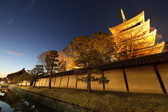 Pagoda of Toji (Teruhide Tomori) Tags: 教王護国寺 東寺 京都 世界遺産 日本 五重塔 pagoda temple kyoto night light japan japon landscape tojitemple architecture woodenbuilding construction happyplanet asiafavorites