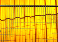 Yellow Shadow Fence (YIP2) Tags: shadow fence hff abstract lines pattern forms graphic graphical facade accidental urban wall detail details yellow minimal minimalism simple